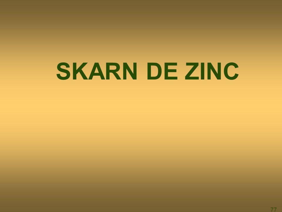 77 SKARN DE ZINC