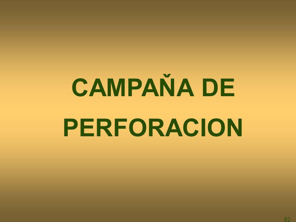 82 CAMPAŇA DE PERFORACION