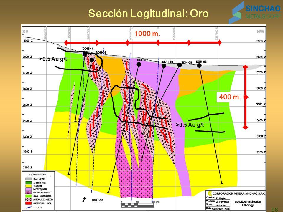 96 Sección Logitudinal: Oro 1000 m. 400 m. >0.5 Au g/t