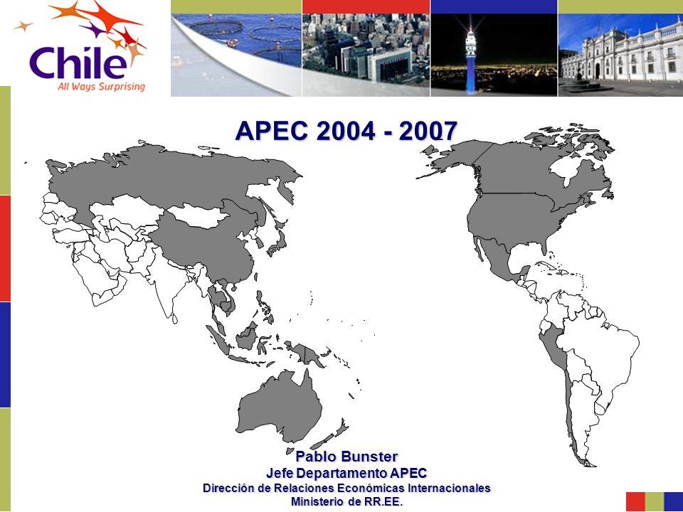 APEC 2004 - 2007 Pablo Bunster Jefe Departamento APEC Dirección de Relaciones Económicas Internacionales Ministerio de RR.EE.