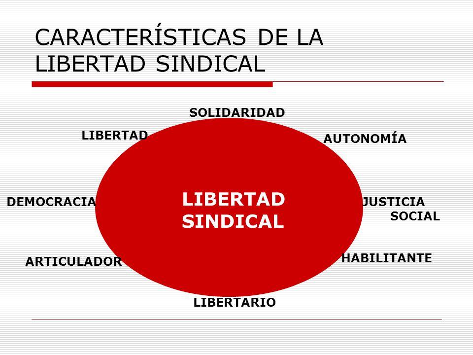 CARACTERÍSTICAS DE LA LIBERTAD SINDICAL AUTONOMÍA DEMOCRACIAJUSTICIA SOCIAL SOLIDARIDAD LIBERTAD LIBERTARIO ARTICULADOR HABILITANTE LIBERTAD SINDICAL