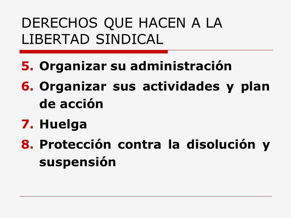 DERECHOS QUE HACEN A LA LIBERTAD SINDICAL 5.Organizar su administración 6.Organizar sus actividades y plan de acción 7.Huelga 8.Protección contra la disolución y suspensión