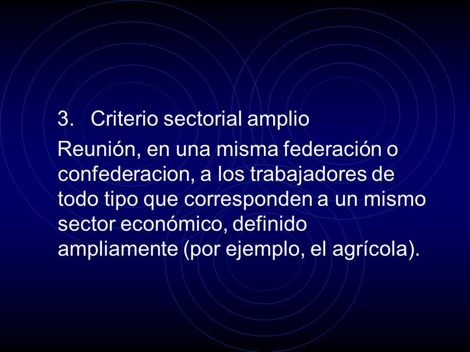 3. Criterio sectorial amplio Reunión, en una misma federación o confederacion, a los trabajadores de todo tipo que corresponden a un mismo sector econ