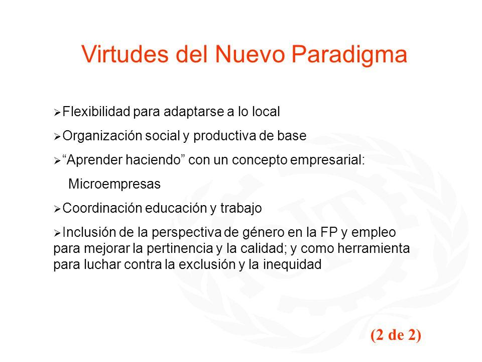 Virtudes del Nuevo Paradigma Flexibilidad para adaptarse a lo local Organización social y productiva de base Aprender haciendo con un concepto empresa