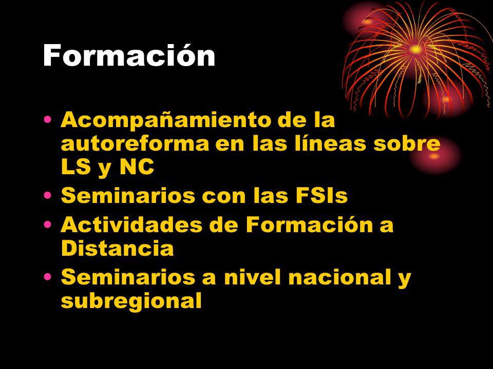 Formación Acompañamiento de la autoreforma en las líneas sobre LS y NC Seminarios con las FSIs Actividades de Formación a Distancia Seminarios a nivel nacional y subregional