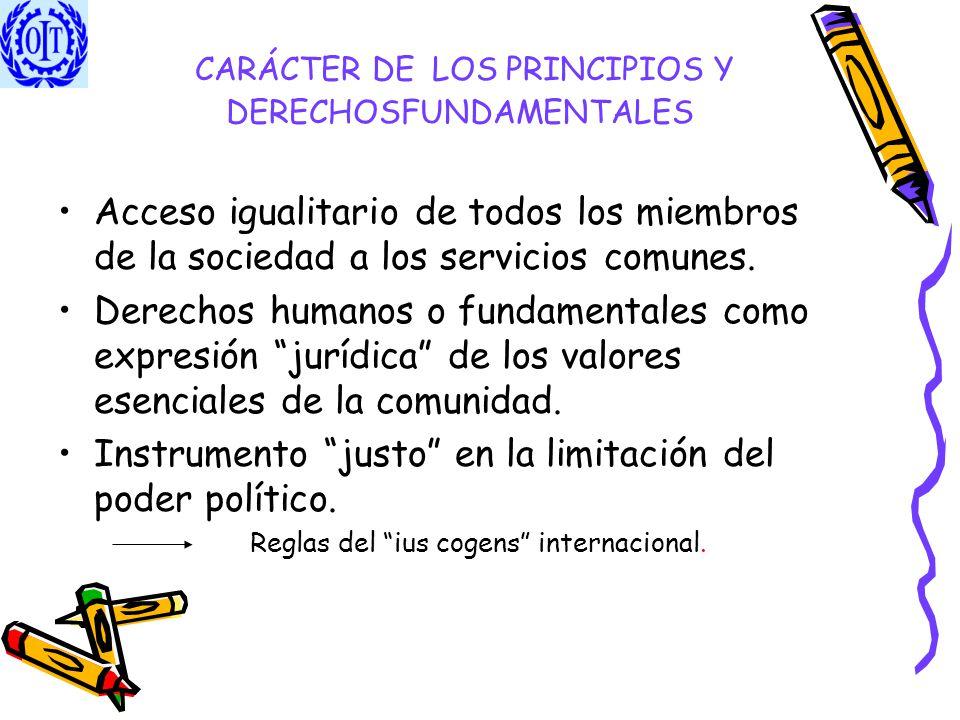 CARÁCTER DE LOS PRINCIPIOS Y DERECHOSFUNDAMENTALES Acceso igualitario de todos los miembros de la sociedad a los servicios comunes. Derechos humanos o