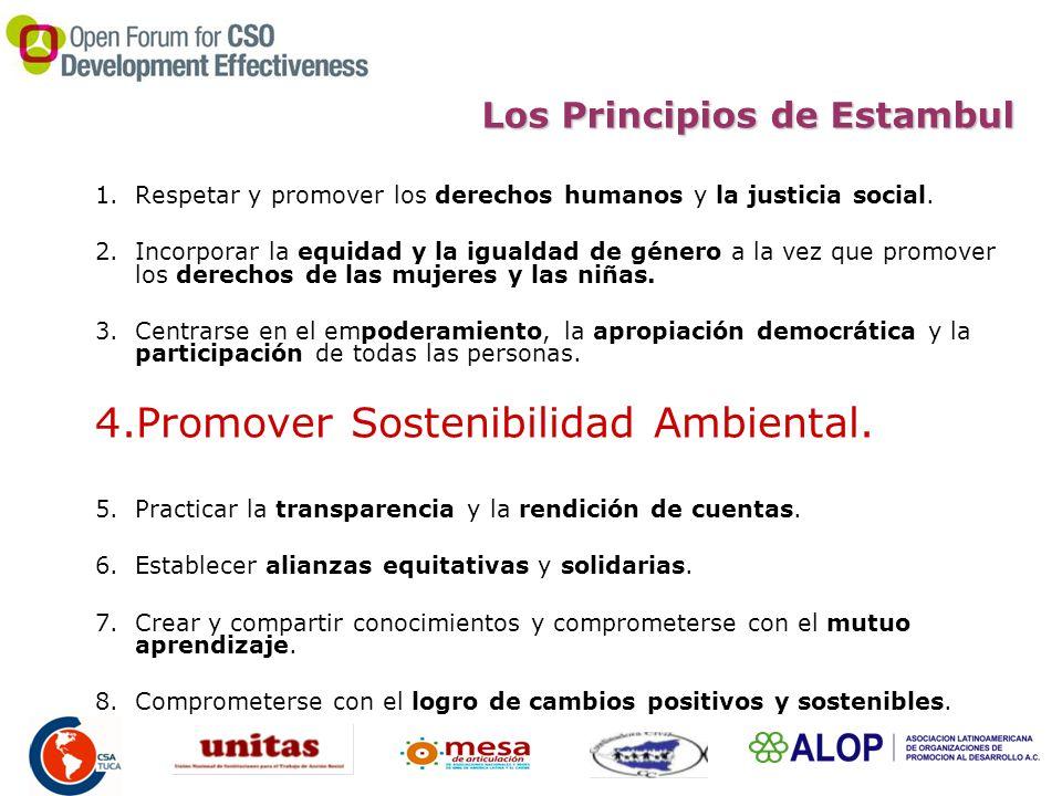 Los Principios de Estambul 1.Respetar y promover los derechos humanos y la justicia social.