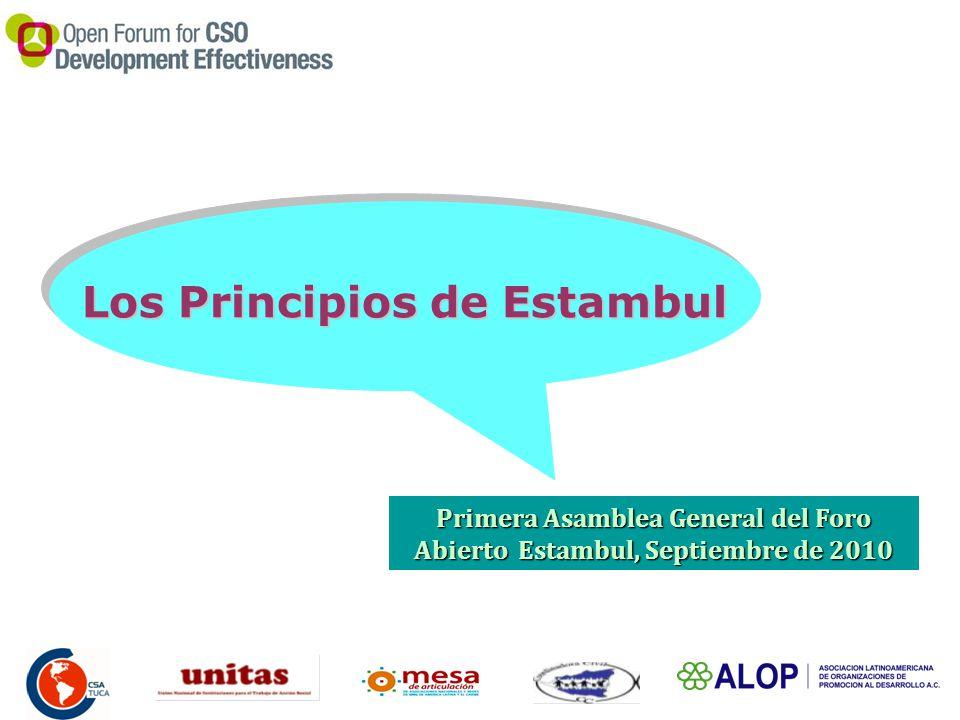 Los Principios de Estambul Primera Asamblea General del Foro Abierto Estambul, Septiembre de 2010