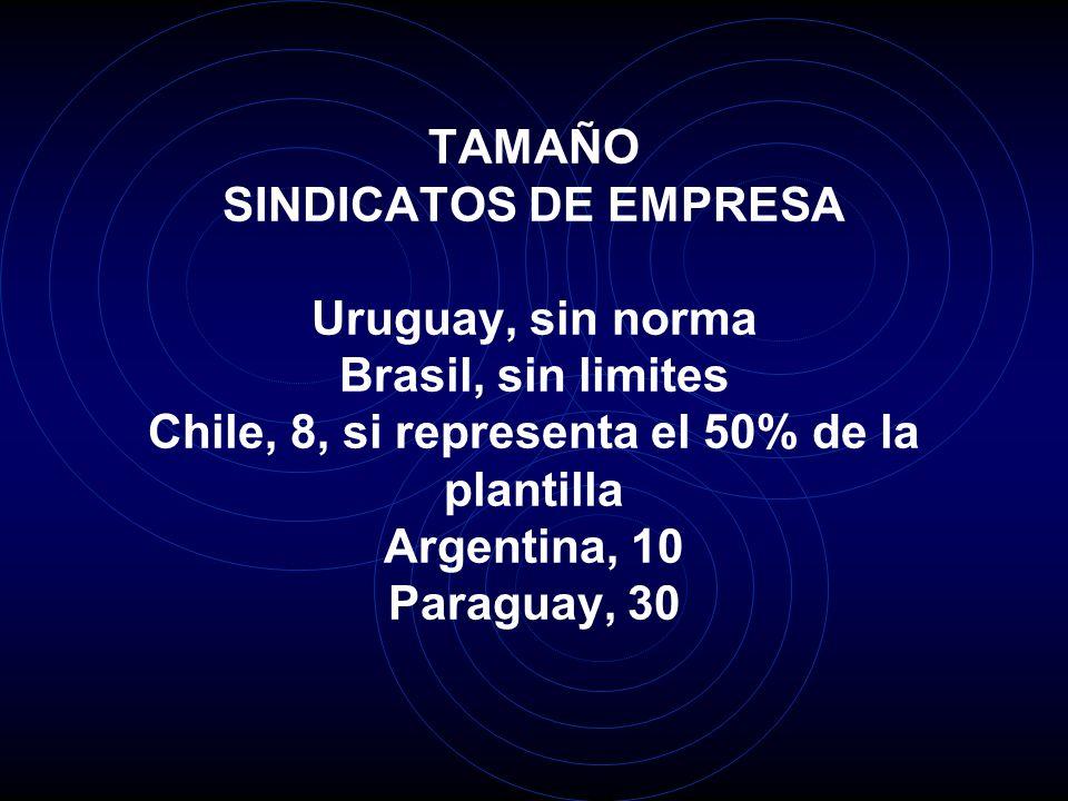TAMAÑO SINDICATOS DE EMPRESA Uruguay, sin norma Brasil, sin limites Chile, 8, si representa el 50% de la plantilla Argentina, 10 Paraguay, 30
