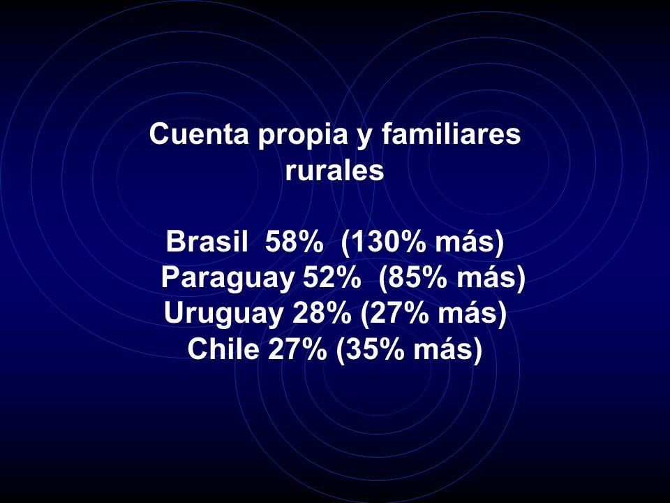 Cuenta propia y familiares rurales Brasil 58% (130% más) Paraguay 52% (85% más) Uruguay 28% (27% más) Chile 27% (35% más)