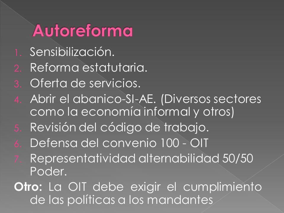 1. Sensibilización. 2. Reforma estatutaria. 3.