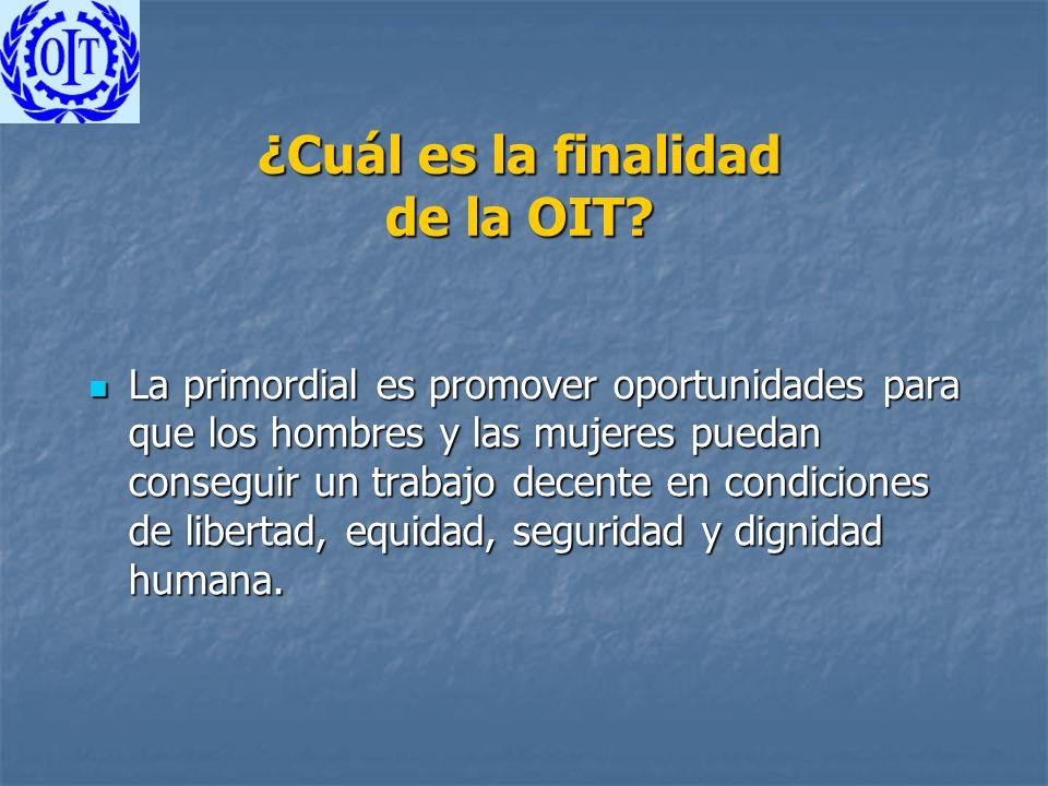 ¿Cuál es la finalidad de la OIT? La primordial es promover oportunidades para que los hombres y las mujeres puedan conseguir un trabajo decente en con
