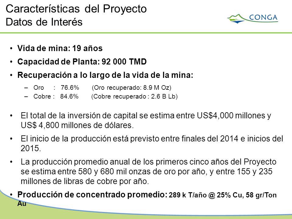 Vida de mina: 19 años Capacidad de Planta: 92 000 TMD Recuperación a lo largo de la vida de la mina: –Oro : 76.6% (Oro recuperado: 8.9 M Oz) –Cobre :