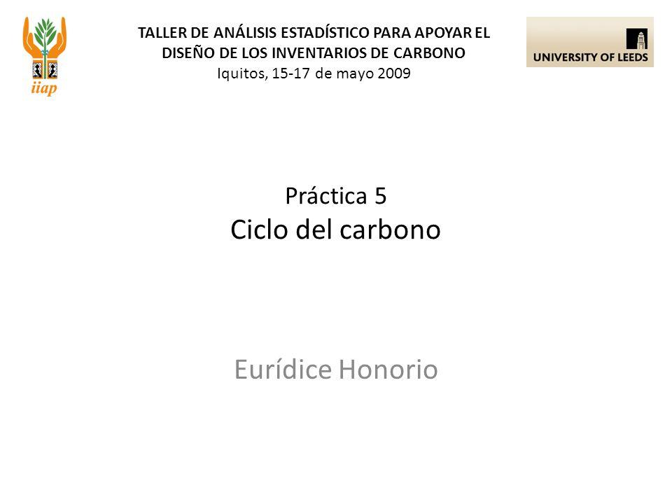 TALLER DE ANÁLISIS ESTADÍSTICO PARA APOYAR EL DISEÑO DE LOS INVENTARIOS DE CARBONO Iquitos, 15-17 de mayo 2009 Eurídice Honorio Práctica 5 Ciclo del carbono