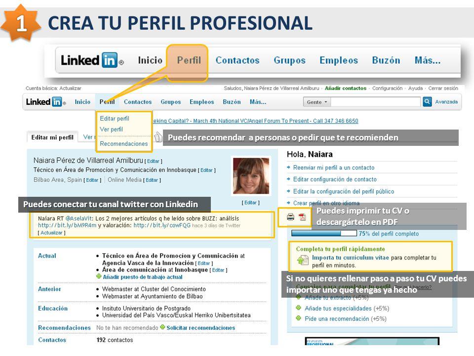 CREA TU PERFIL PROFESIONAL Puedes recomendar a personas o pedir que te recomienden Puedes conectar tu canal twitter con Linkedin Puedes imprimir tu CV