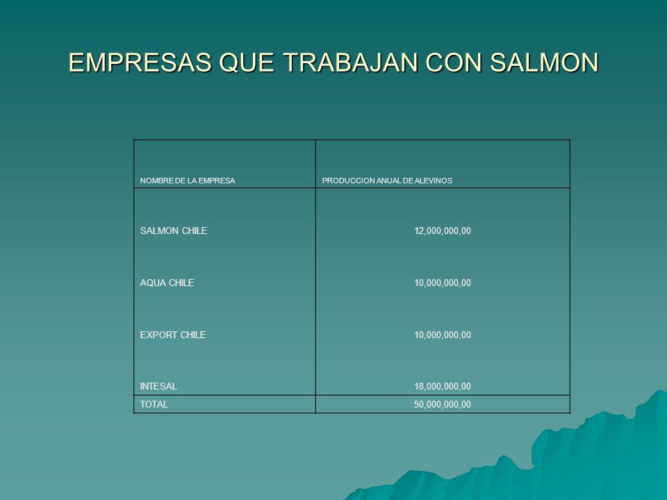EMPRESAS QUE TRABAJAN CON SALMON NOMBRE DE LA EMPRESAPRODUCCION ANUAL DE ALEVINOS SALMON CHILE12,000,000,00 AQUA CHILE10,000,000,00 EXPORT CHILE10,000
