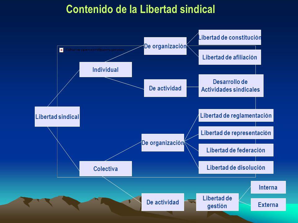 Libertad sindical De organización De actividad De organización De actividad Colectiva Individual Libertad de constitución Libertad de afiliación Desar
