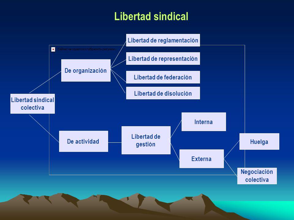 Libertad sindical colectiva De organización De actividad Libertad de reglamentación Libertad de disolución Libertad de representación Libertad de fede