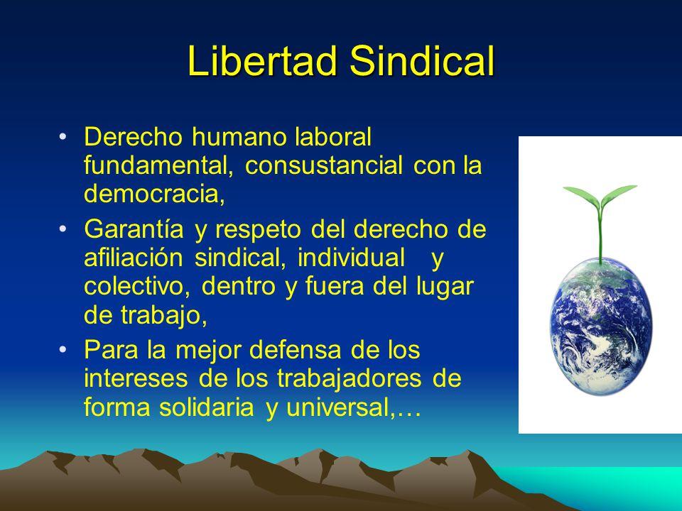 Libertad Sindical Derecho humano laboral fundamental, consustancial con la democracia, Garantía y respeto del derecho de afiliación sindical, individu