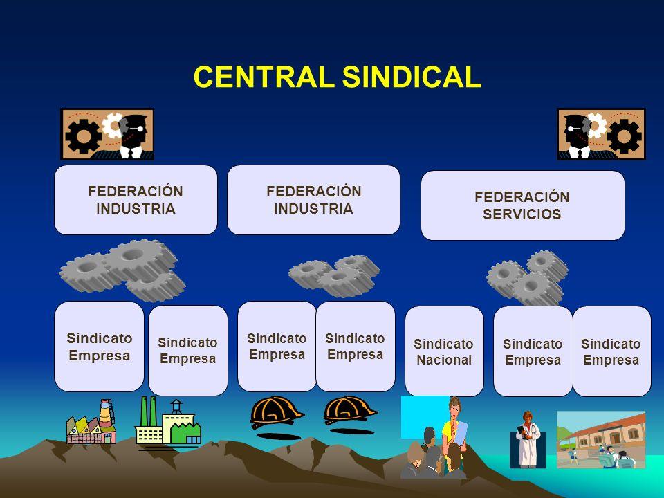 Basado en: Sindicatos y Federaciones sectoriales y/o de industria I Afiliación individual y directa.