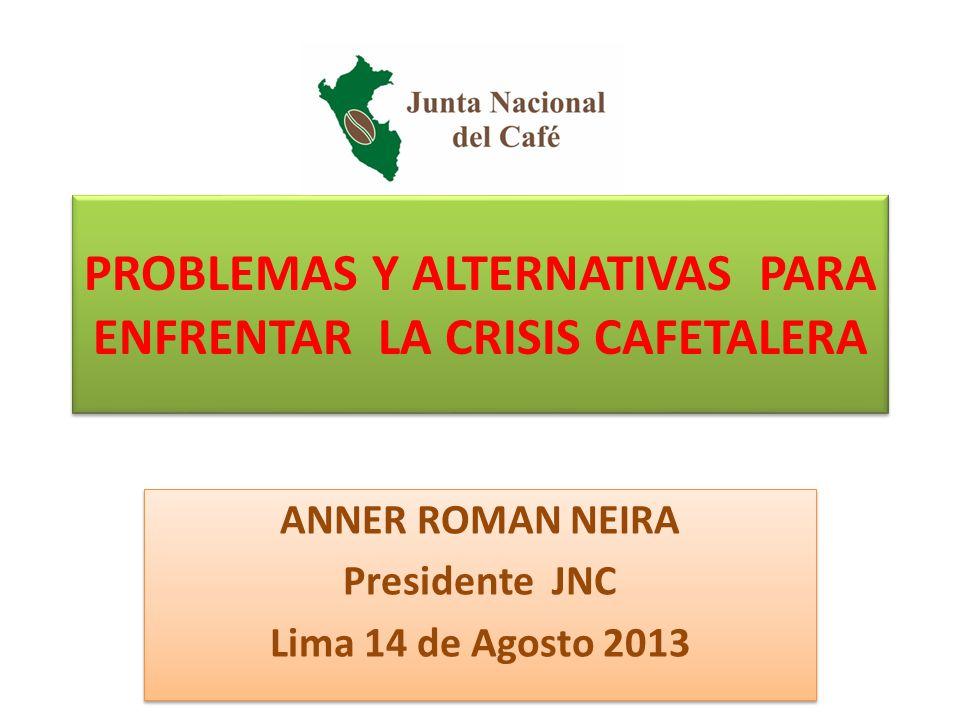PROBLEMAS Y ALTERNATIVAS PARA ENFRENTAR LA CRISIS CAFETALERA ANNER ROMAN NEIRA Presidente JNC Lima 14 de Agosto 2013 ANNER ROMAN NEIRA Presidente JNC Lima 14 de Agosto 2013