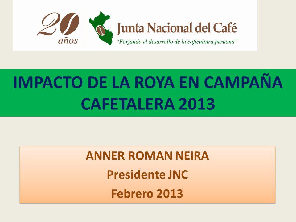 IMPACTO DE LA ROYA EN CAMPAÑA CAFETALERA 2013 ANNER ROMAN NEIRA Presidente JNC Febrero 2013 ANNER ROMAN NEIRA Presidente JNC Febrero 2013