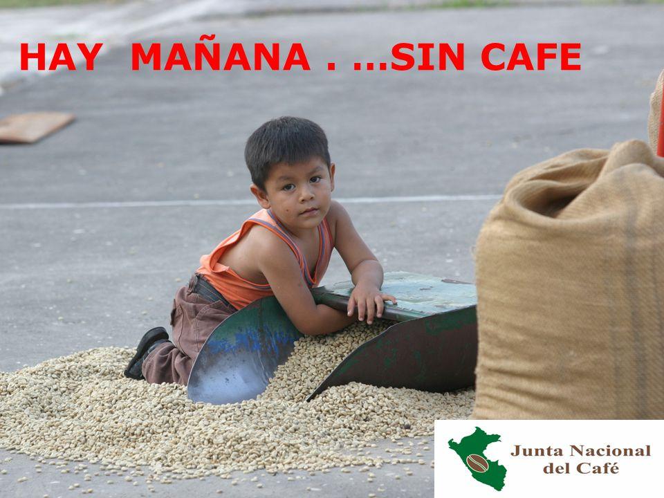 NO HAY MAÑANA. …SIN CAFE
