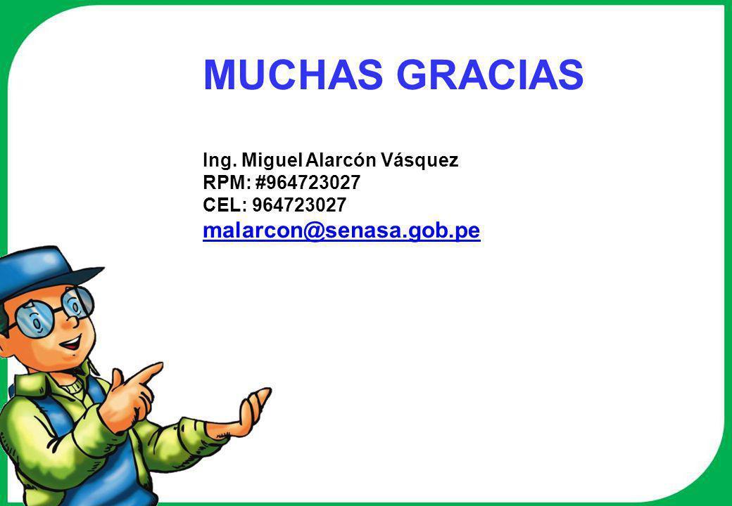 MUCHAS GRACIAS Ing. Miguel Alarcón Vásquez RPM: #964723027 CEL: 964723027 malarcon@senasa.gob.pe