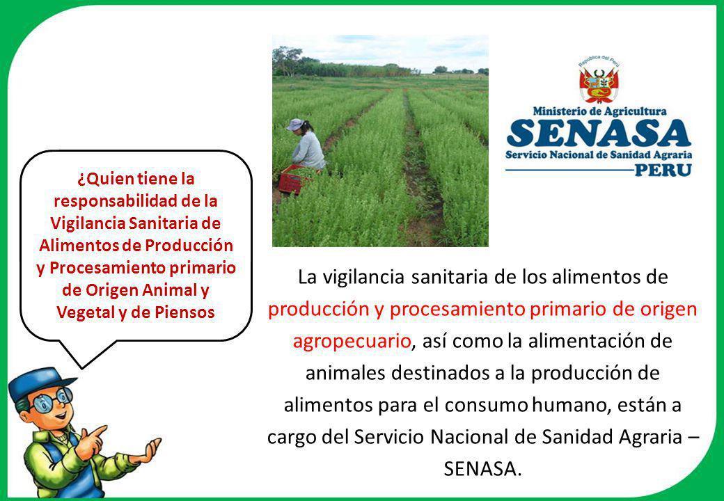 La vigilancia sanitaria de los alimentos de producción y procesamiento primario de origen agropecuario, así como la alimentación de animales destinados a la producción de alimentos para el consumo humano, están a cargo del Servicio Nacional de Sanidad Agraria – SENASA.