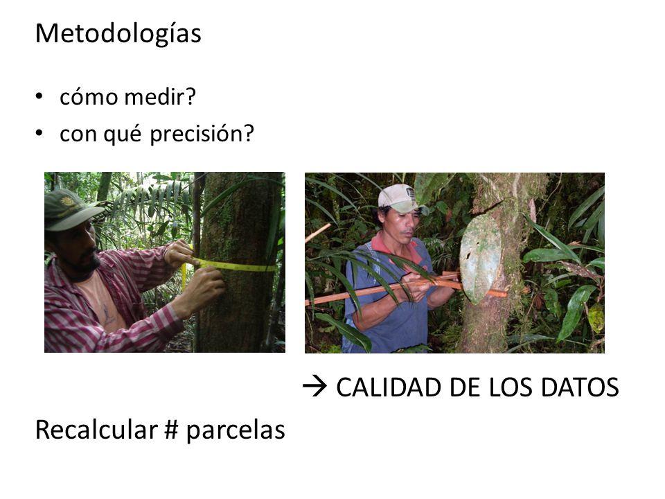 Metodologías cómo medir? con qué precisión? CALIDAD DE LOS DATOS Recalcular # parcelas