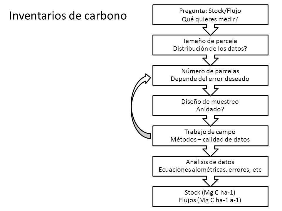 Inventarios de carbono Stock (Mg C ha-1) Flujos (Mg C ha-1 a-1) Análisis de datos Ecuaciones alométricas, errores, etc Trabajo de campo Métodos – cali