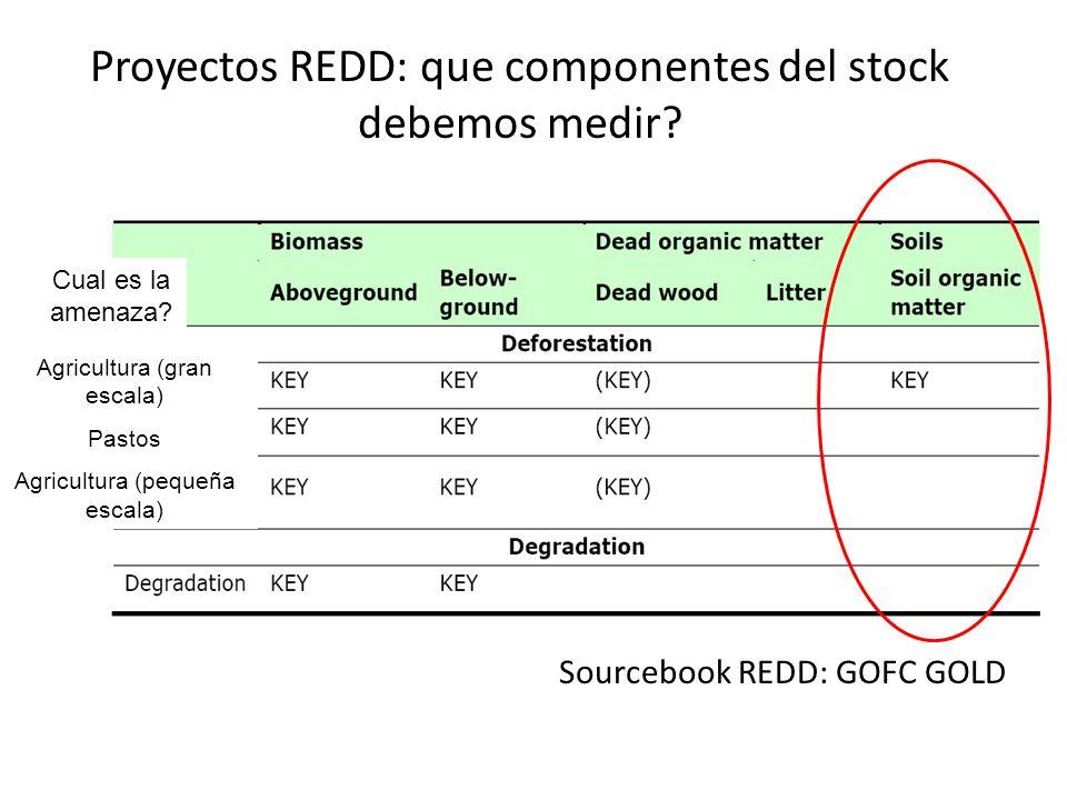 Proyectos REDD: que componentes del stock debemos medir? Sourcebook REDD: GOFC GOLD Cual es la amenaza? Agricultura (gran escala) Pastos Agricultura (
