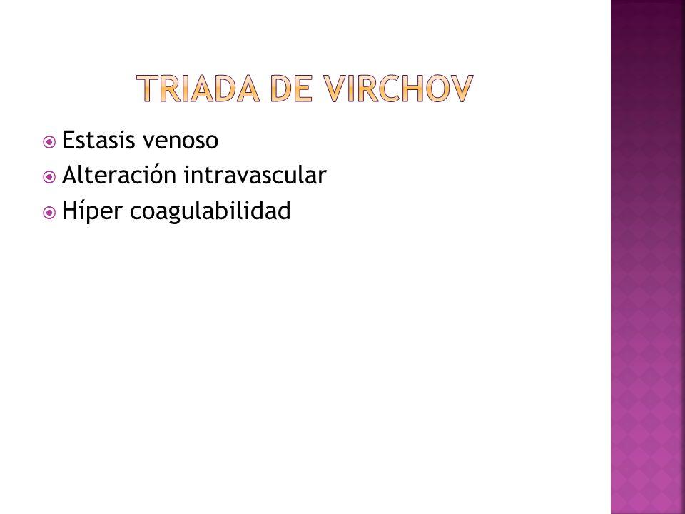 Estasis venoso Alteración intravascular Híper coagulabilidad