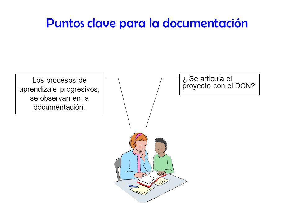 Puntos clave para la documentación ¿ Se articula el proyecto con el DCN? Los procesos de aprendizaje progresivos, se observan en la documentación.