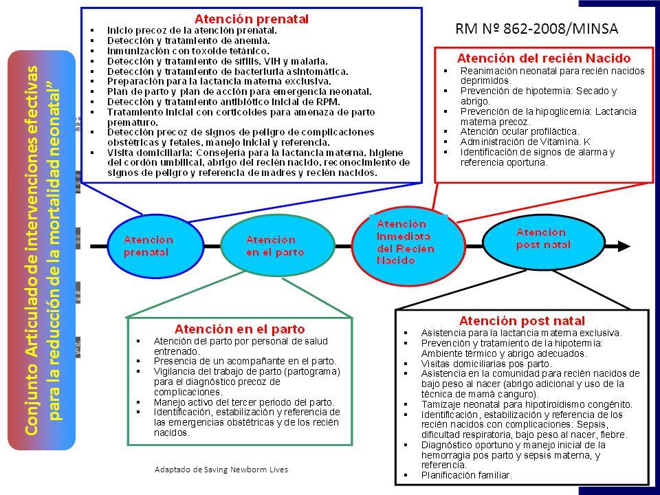 Conjunto Articulado de intervenciones efectivas para la reducción de la mortalidad neonatal Adaptado de Saving Newborm Lives RM Nº 862-2008/MINSA
