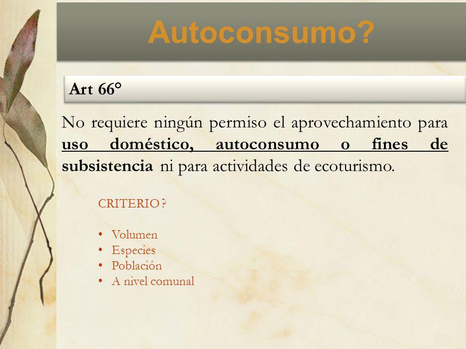 Autoconsumo? Art 66° No requiere ningún permiso el aprovechamiento para uso doméstico, autoconsumo o fines de subsistencia ni para actividades de ecot
