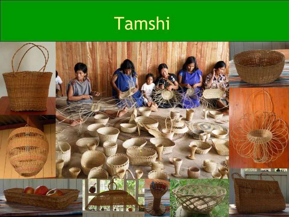 Tamshi