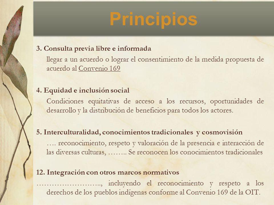 Principios 3. Consulta previa libre e informada llegar a un acuerdo o lograr el consentimiento de la medida propuesta de acuerdo al Convenio 169 4. Eq
