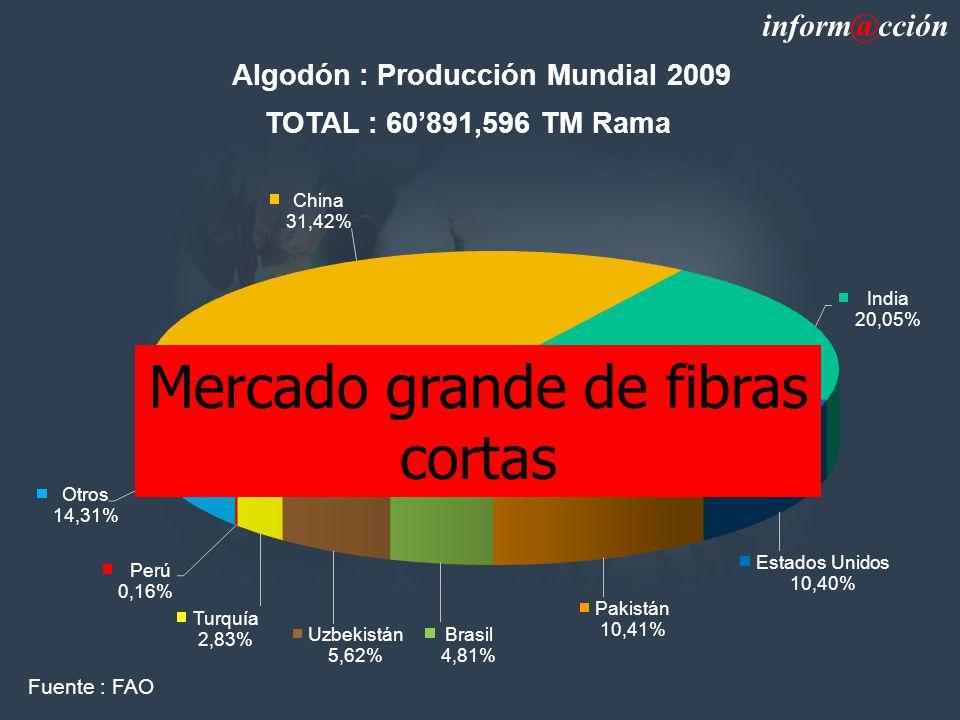 Algodón : Producción Mundial 2009 TOTAL : 60891,596 TM Rama inform@cción Fuente : FAO Mercado grande de fibras cortas