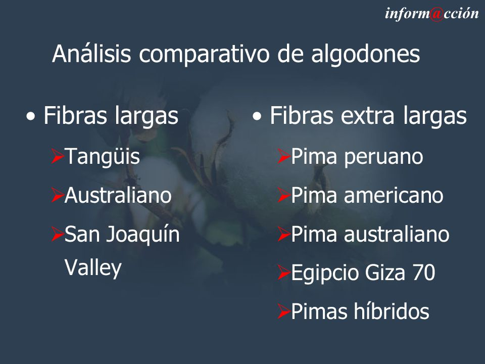 Análisis comparativo de algodones Fibras largas Tangüis Australiano San Joaquín Valley Fibras extra largas Pima peruano Pima americano Pima australiano Egipcio Giza 70 Pimas híbridos inform@cción
