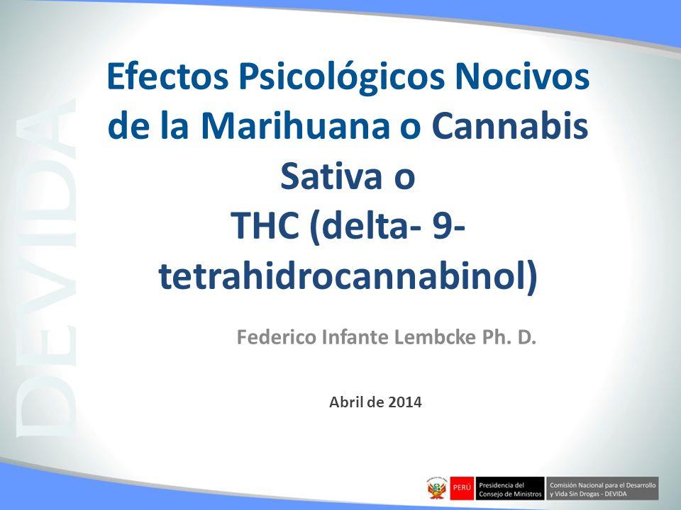 Abril de 2014 Efectos Psicológicos Nocivos de la Marihuana o Cannabis Sativa o THC (delta- 9- tetrahidrocannabinol) Federico Infante Lembcke Ph. D.