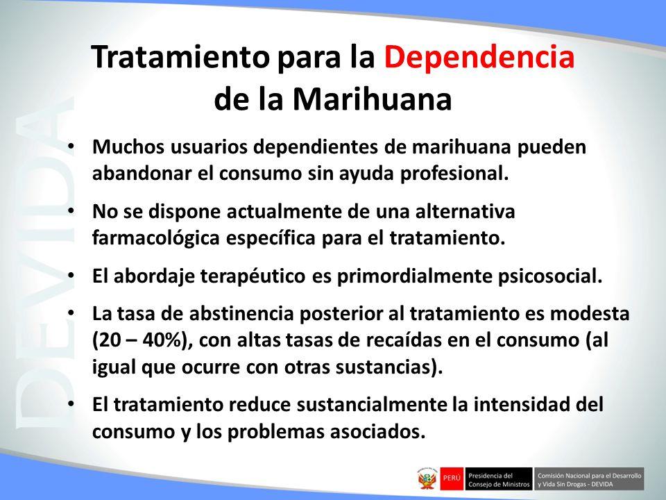 Tratamiento para la Dependencia de la Marihuana Muchos usuarios dependientes de marihuana pueden abandonar el consumo sin ayuda profesional. No se dis
