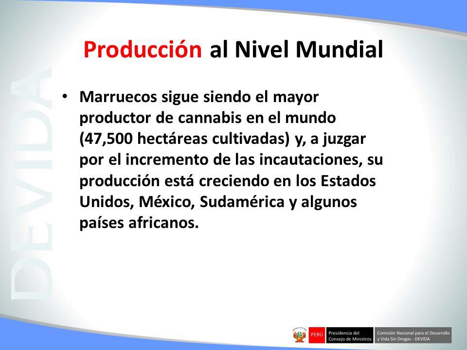 Producción al Nivel Mundial Marruecos sigue siendo el mayor productor de cannabis en el mundo (47,500 hectáreas cultivadas) y, a juzgar por el increme