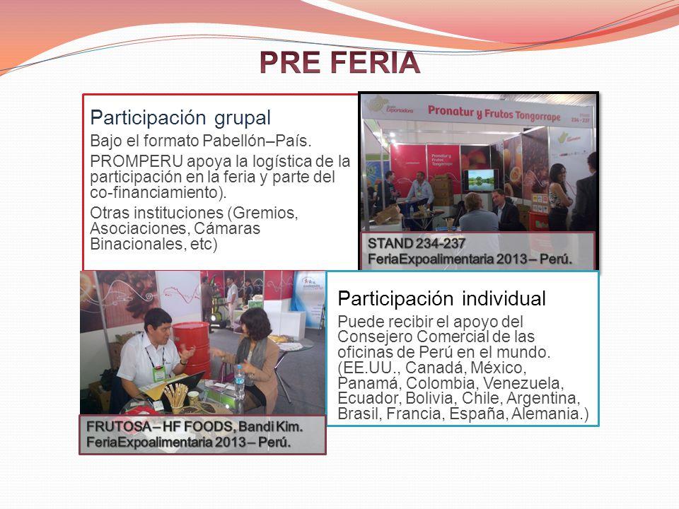 Participación grupal Bajo el formato Pabellón–País.