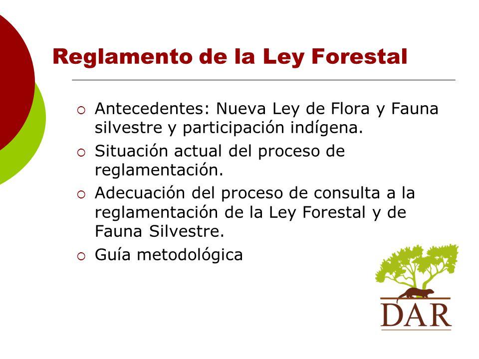 Reglamento de la Ley Forestal Antecedentes: Nueva Ley de Flora y Fauna silvestre y participación indígena.