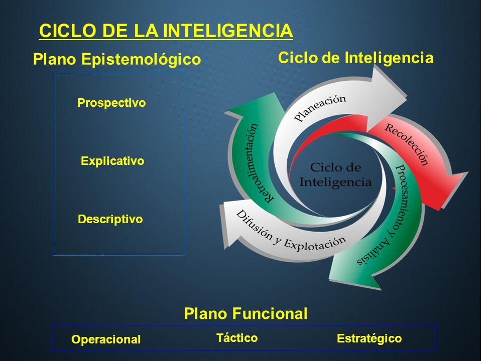 CICLO DE LA INTELIGENCIA Plano Epistemológico Prospectivo Explicativo Descriptivo Plano Funcional Operacional Táctico Estratégico Ciclo de Inteligenci