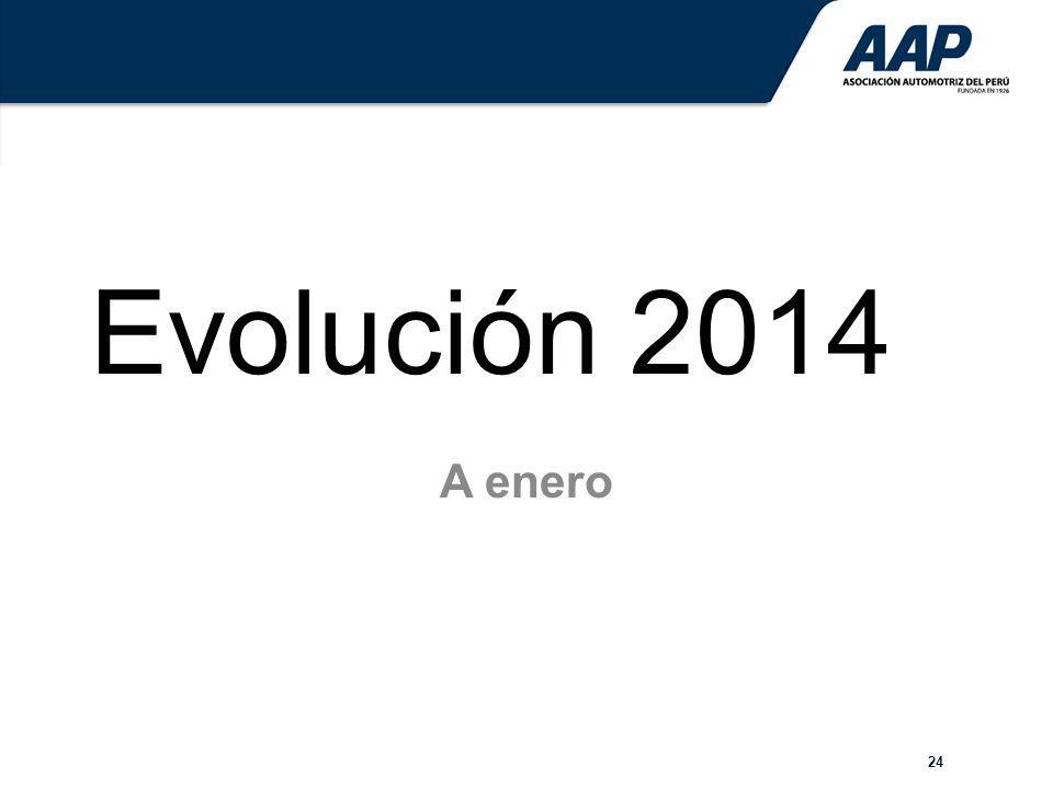 24 Evolución 2014 A enero