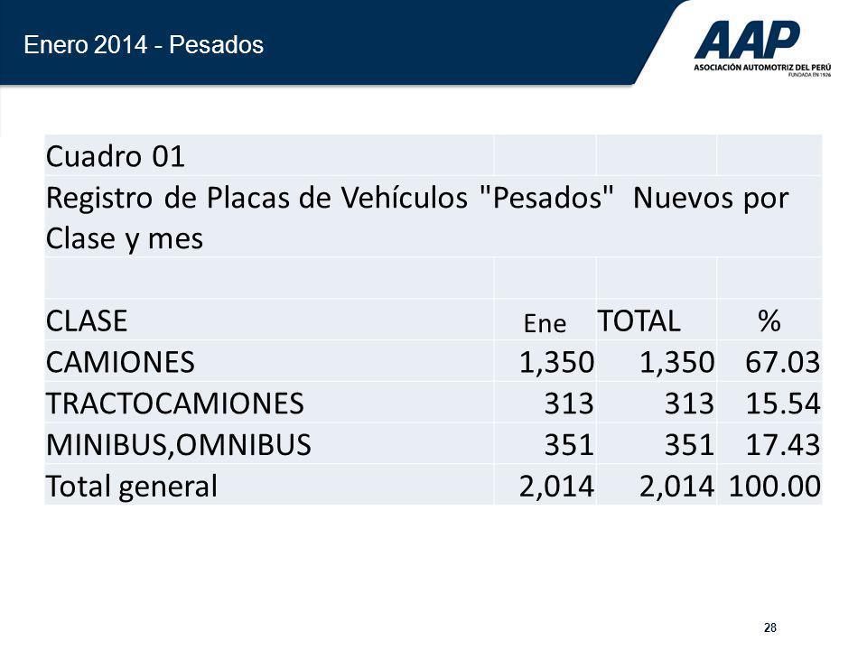 28 Enero 2014 - Pesados Cuadro 01 Registro de Placas de Vehículos