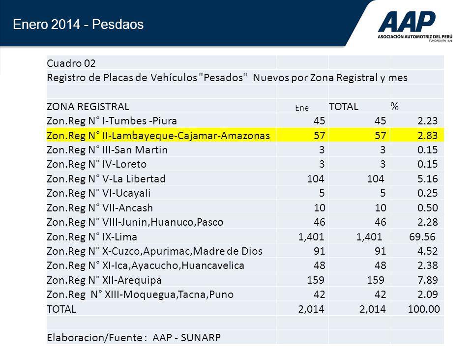 29 Enero 2014 - Pesdaos Cuadro 02 Registro de Placas de Vehículos