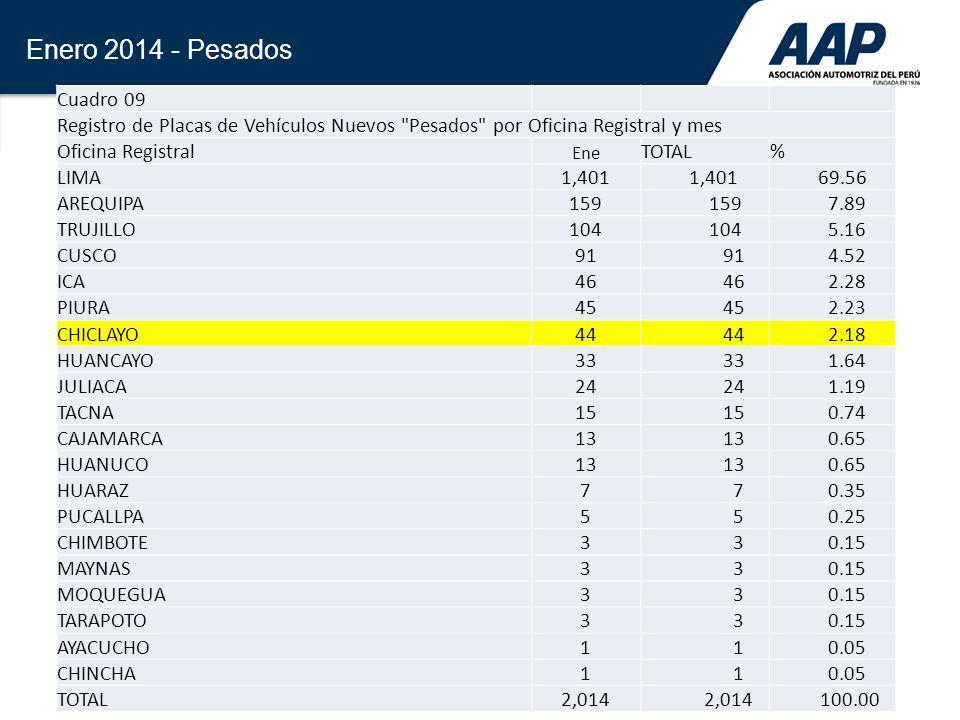 30 Enero 2014 - Pesados Cuadro 09 Registro de Placas de Vehículos Nuevos